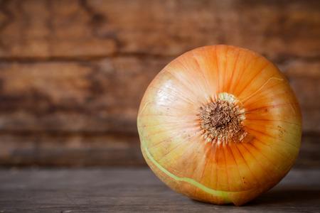 cebolla blanca: cerca de cebolla blanca fresca en la madera
