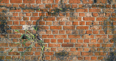 cracked wall vintage. wall background,old wall