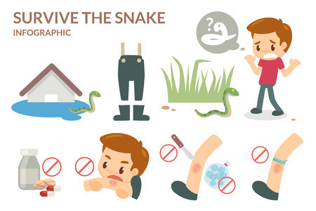 How to survive the snake. Wild animal. Illustration