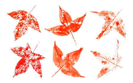Red maple leaves in color water style.