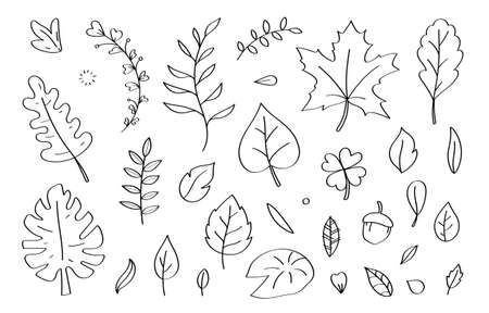 Cute doodle leaf cartoon icons and objects.