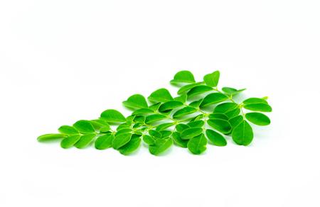Moringa leaves isolated on white background Stock Photo - 106510635