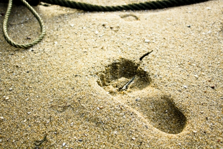 footmark: footmark on beach