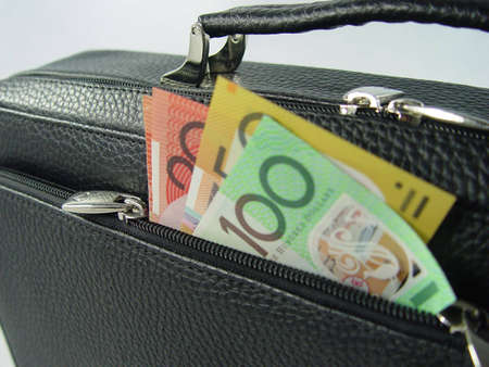 Business bag and money photo