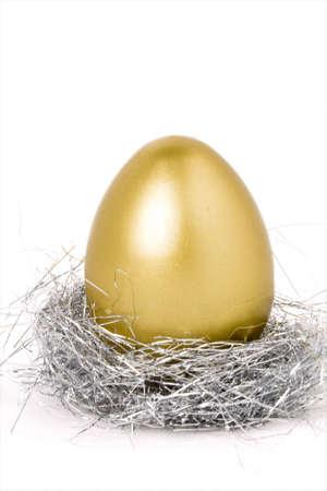 nest egg: golden egg, concept of hatch Money
