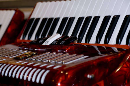 Shot of beautiful accordions for sale Stock Photo - 3110486