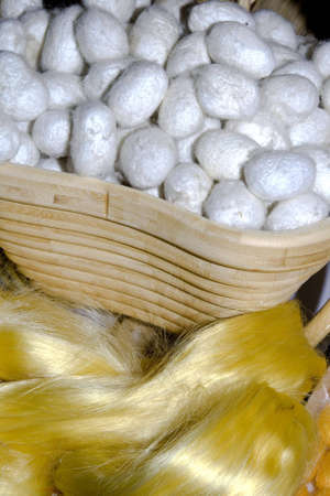 white silk cocoons in a basket