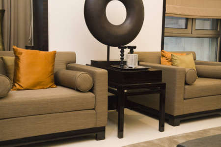 Luxury modern living room with nice sofa