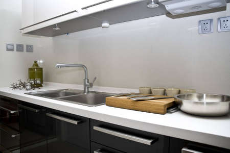 epicure: modern large kitchen of home