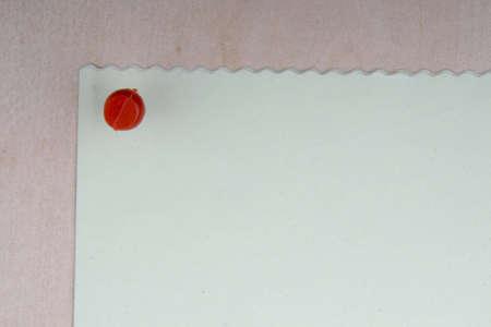 tack board: Nota en blanco en un tablero con una tachuela Foto de archivo