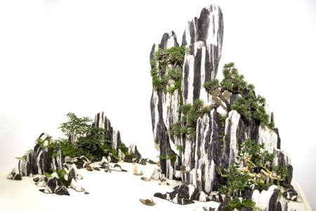 Bonsai at the miniature rocks, like traditional Chinese painting