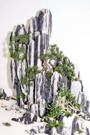 Bonsai at the miniature rocks, like traditional Chinese painting  photo