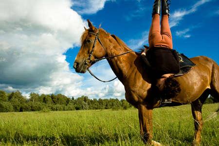 ballad: horse