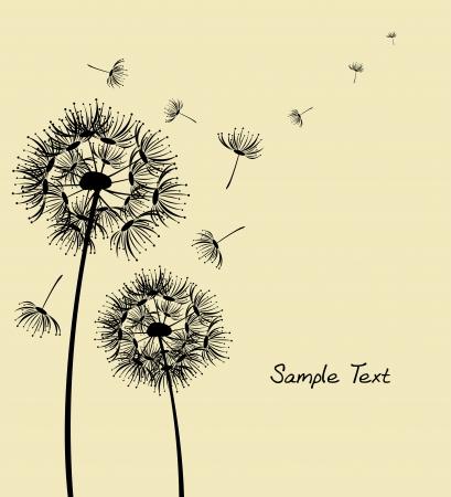 dandelion seed: dandelion  Illustration