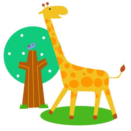 cute giraffe: Cute giraffe Illustration