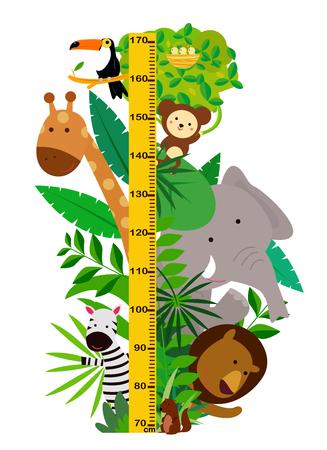 Cartoon wild animals with height measurement