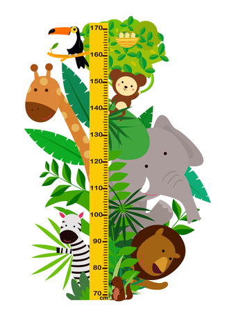 Cartoon wild animals with height measurement