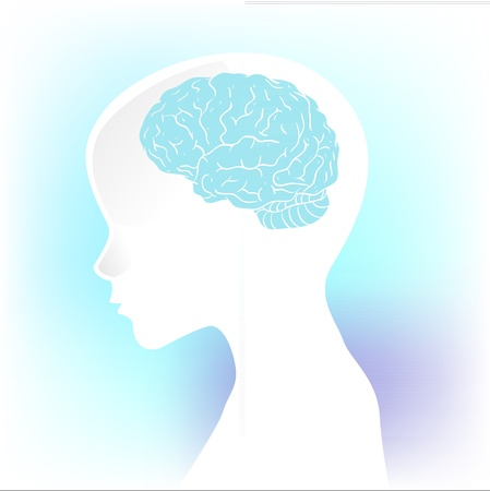 artificial model: Human anatomical profile silhouette with a brain in his head Illustration