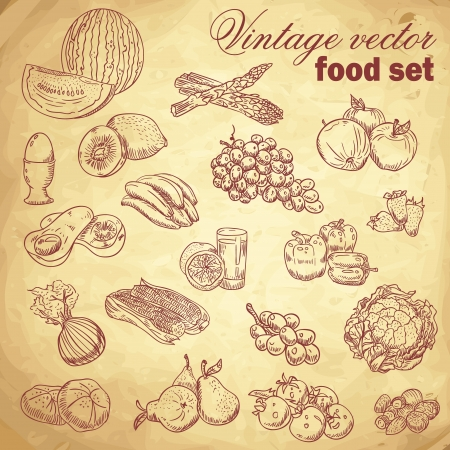 cabbage: Vintage hand getekende food set met diverse groenten en fruit