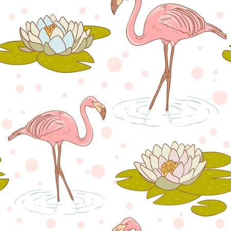 flamenco ave: Pink flamingo de pie en el agua con lirio de agua textura de la flor perfecta