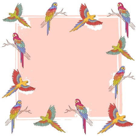 Parrot ara collection colorful frame Vector