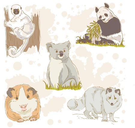 Wildlife animals retro drawing collection Vector