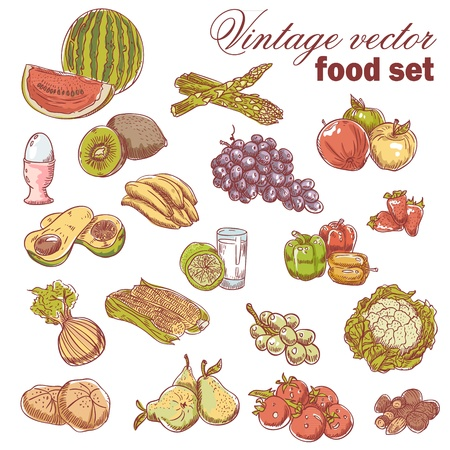 Vintage hand-drawn food set with various fruit and vegetables Vector