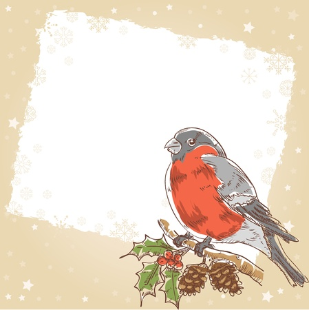 Cute Christmas hand drawn ink retro postcard with beautiful bullfinch bird with red breast sitting on a tree with holly berries and fir cones  Vector