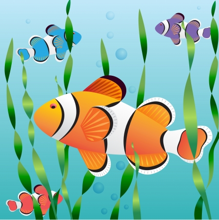 fish tank: Realistic exotic colorful fish in aquarium swimming undewater