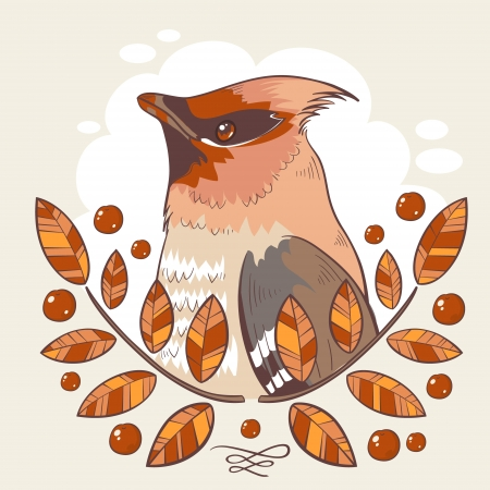 ornithology: Wax bird colorful tattoo illustration with mountain ash branches and berries