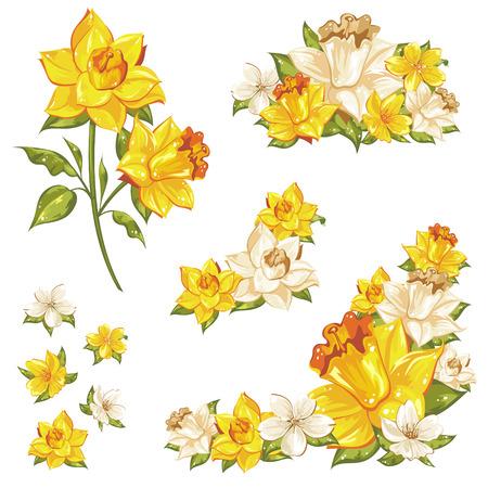 esquineros de flores: Conjunto floral suave de elementos de la flor aislados en blanco
