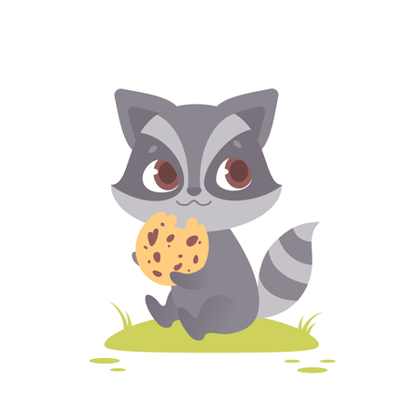 Cute baby raccoon sitting, eating a chocolate chip cookie. Great for kids and children designs of clothes, apparel, toys, mobile games and web sites. Isolated on white background.