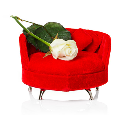 Red sofa, couch with white rose close-up isolated photo