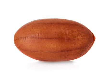 peanut isolated on white