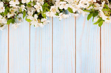 appel bloemen tak op houten achtergrond Stockfoto