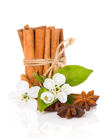 stick of cinnamon: stick cinnamon, anise star and apple flowers isolated