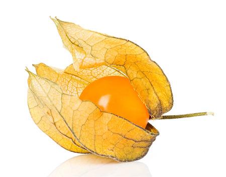Physalis fruit geïsoleerd Stockfoto