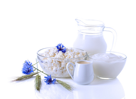 dairy products: Dairy Products  Milk, cream, sour cream and cottage cheese