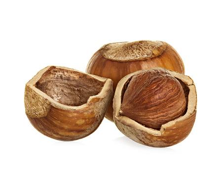 Hazelnuts isolated on a white background photo