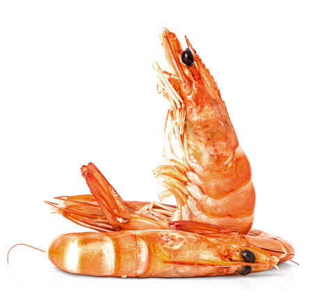 tiger shrimp: Boiled shrimps isolated on white background;