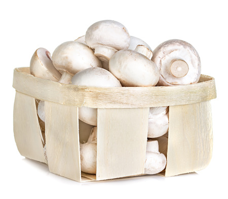 Champignon mushrooms in basket photo