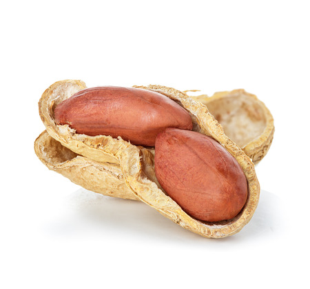 earthnut: Peanuts isolated on a white background