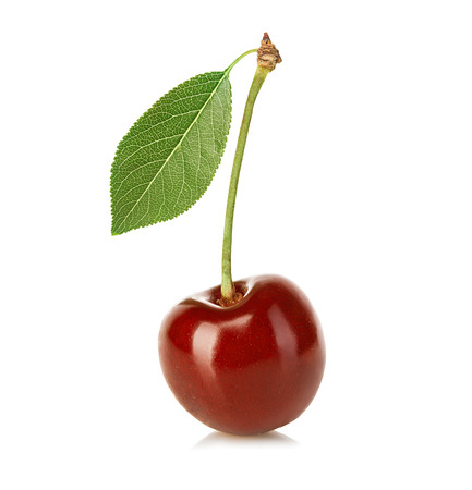 pulpy: Cherry isolated on white