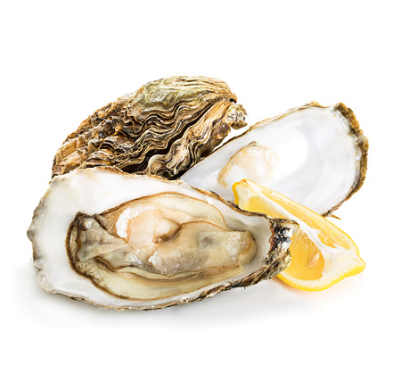 limón: Oysters isolated on a white background