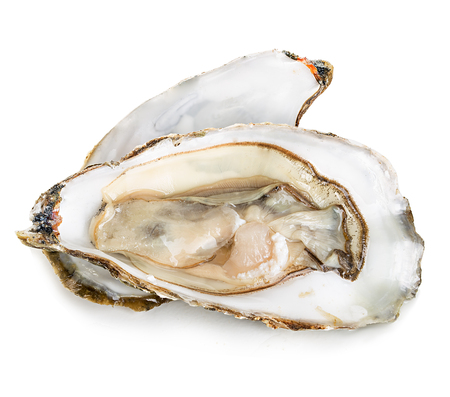 Oysters with pearls isolated on white background Banque d'images