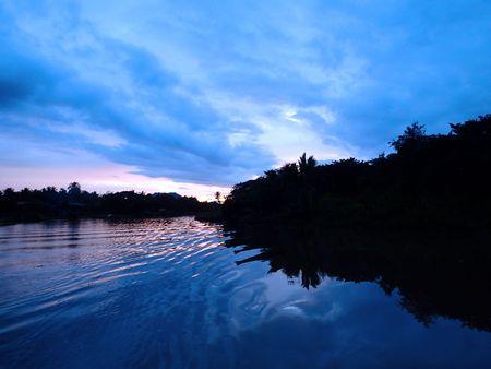 mangroves: Sabah mangroves