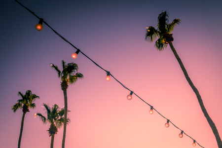 Pink Sunset Behind String Lights and Palm Trees at a Party in Palm Springs