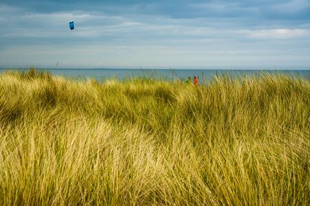 Background Image Looking Over Dunes to Seascape With Kite