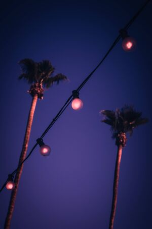 Tropical Nights Background with String Lights With Palm Trees