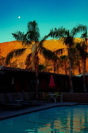 Desert Mountains and Palm Trees With String Lights in the Moonlight Reflected in a Swimming Pool in Palm Springs California